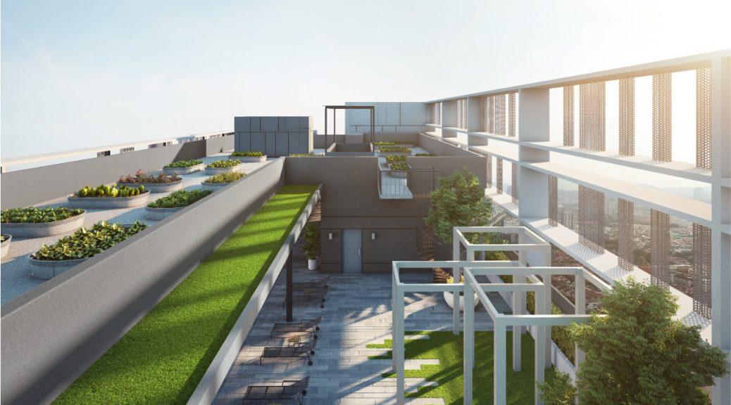 Garden in The Sky @ Roof